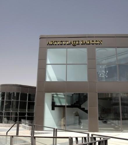 Articulate Baboon Gallery